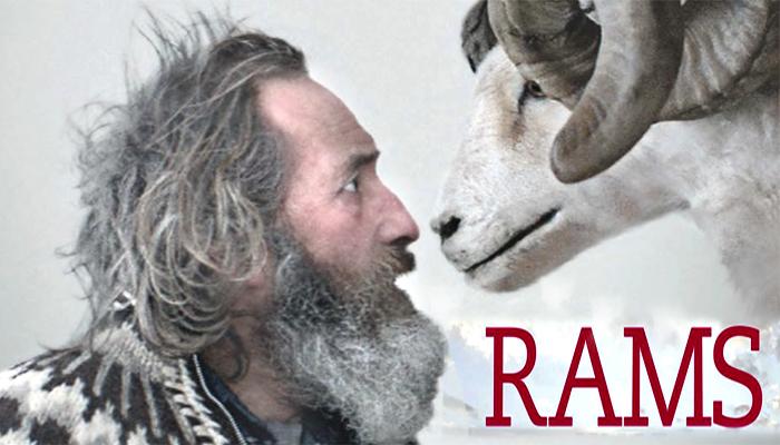 65 RAMS