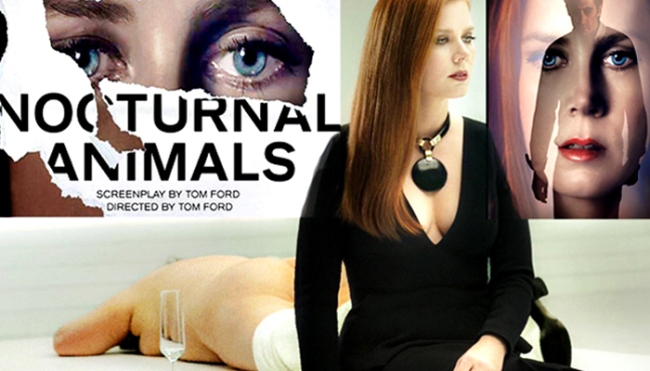 131-nocturnal-animals